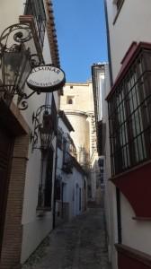 2015-01-26_29_Malaga_Gibraltar_197