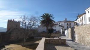 2015-01-26_29_Malaga_Gibraltar_232