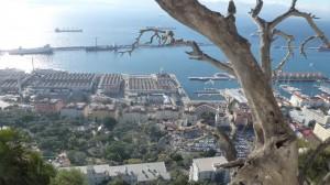 2015-01-26_29_Malaga_Gibraltar_331