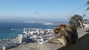2015-01-26_29_Malaga_Gibraltar_334
