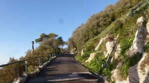 2015-01-26_29_Malaga_Gibraltar_382