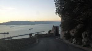 2015-01-26_29_Malaga_Gibraltar_395