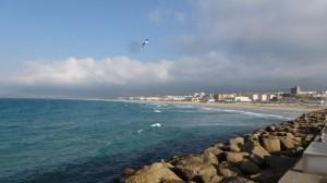 2015-01-26_29_Malaga_Gibraltar_435