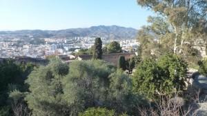 2015-01-26_29_Malaga_Gibraltar_532